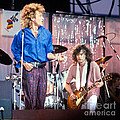 Led Zeppelin Page and Plant Live Aid 1985 Poster by Chuck Spang
