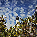 Lighthouse at Bill Baggs Florida State Park Print by Eyzen M Kim
