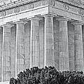 Lincoln Memorial Pillars BW Print by Susan Candelario