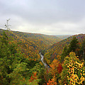 Looking downstream at Blackwater River Gorge in fall Poster by Dan Friend