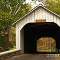 Loux Bridge and Sharp Left - Bucks County  Print by Anna Lisa Yoder