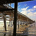 Lowtide at the Pier by Traci Lehman