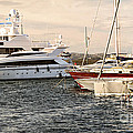 Luxury boats at St.Tropez Poster by Elena Elisseeva