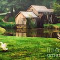 Mabrys Mill and the Welcoming Committee Print by Darren Fisher