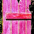 Magenta Painted Door in Garden  Poster by Asha Carolyn Young and Daniel Furon