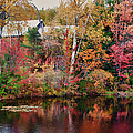 Maine barn through the trees Print by Jeff Folger