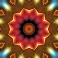 Mandala 103 Poster by Terry Reynoldson