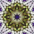 Mandala 21 Poster by Terry Reynoldson