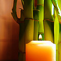 Meditation Candle and Bamboo Poster by Olivier Le Queinec