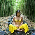 Meditation in Bamboo Forest Poster by M Swiet Productions