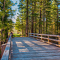 Methow Valley Community Trail at Wolf Creek Bridge Print by Omaste Witkowski