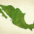 Mexico Grass Map Print by Aged Pixel