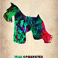 Miniature Schnauzer Poster 2 Poster by Irina  March
