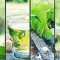 Mint tea collage Poster by Mythja  Photography
