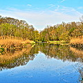 Mirror Canal Poster by Frozen in Time Fine Art Photography