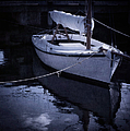 Moonlight Sail Print by Amy Weiss