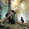 Morning In A Pine Forest Poster by Ivan Shishkin