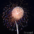 Multiple Fireworks Print by Lj Lambert
