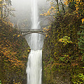 Multnomah Autumn Mist Print by Mike  Dawson