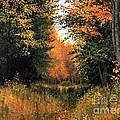 My Secret Autumn Place Print by Michael Swanson
