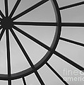 Mystic Wheel  Print by Steven Milner