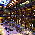 National Museum of Natural History - Paris France - 011370 Print by DC Photographer