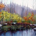 Nature Center Pond at Warner Park in Autumn Print by Janet King