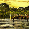 Neshaminy State Park Print by Tom Gari Gallery-Three-Photography