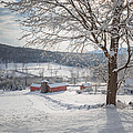 New England Winter Farms Morning Print by Bill  Wakeley