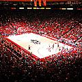 New Mexico Lobos University Arena Poster by Replay Photos