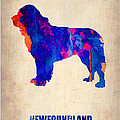 Newfoundland Poster Print by Irina  March