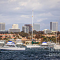Newport Beach Skyline  Print by Paul Velgos