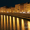 Night View of river Arno bank in Pisa Poster by Kiril Stanchev