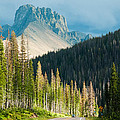 Nohku Crags Summer Storm Cameron Pass Rocky Mountains Northern Colorado Print by Robert Ford