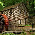 Norris Dam Grist Mill Poster by Douglas Stucky