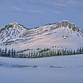 Observation Peak Print by Michele Myers