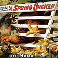 Oh Mama Print by Terry Reynoldson