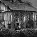 Old Barn Print by Bill  Wakeley