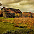 Old Barn In October Print by Lois Bryan