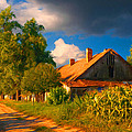 Old farm on the country side by Sasa Prudkov