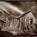 Old Shack Bodie Ghost Town Print by Steve Gadomski