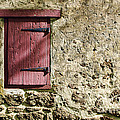 Old Wall and Door Poster by Olivier Le Queinec
