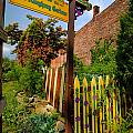 Olde Allegheny Community Gardens Poster by Amy Cicconi