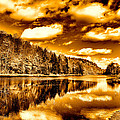 On Golden Pond Print by David Patterson