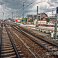 On The Tracks Print by Gregory Dyer