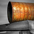 Orange Appeal - Rusty Old Can Print by Gary Heller
