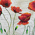 Orange Poppies Original Abstract Flower Painting by Megan Duncanson Poster by Megan Duncanson