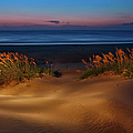 Outer Banks - Before Sunrise on Pea Island I Print by Dan Carmichael