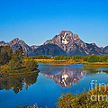 Oxbow Bend II Poster by Robert Bales