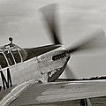 P51 Mustang Takeoff Ready Poster by M K  Miller